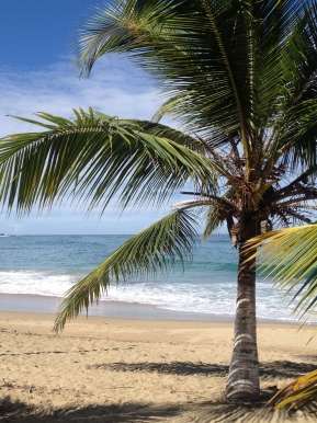 13 Useful facts about Puerto Rico to help you sound like a local